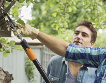 Take Precautions to Prevent Yardwork Injuries